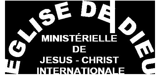 Logo-IDMJI-Frances
